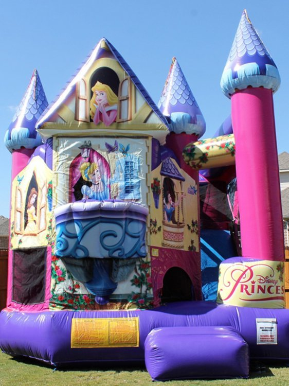 5 in 1 Disney Princess Clubhouse (Wet or Dry)